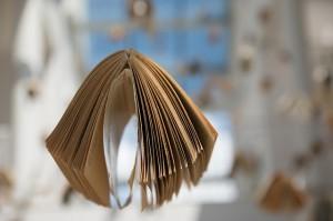 books_Suspended_Pixabay_Jarmoluk
